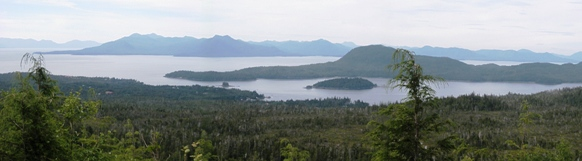 A view of Clover Pass in Ketchikan from the Adventure Kart Tour