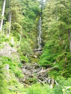 Waterfall seen during the Adventure Kart tour in Ketchikan