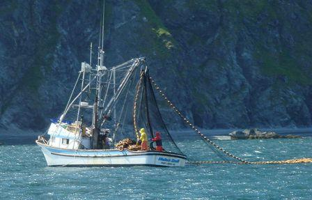 Seasonal ketchikan employment information about the for Commercial fishing jobs