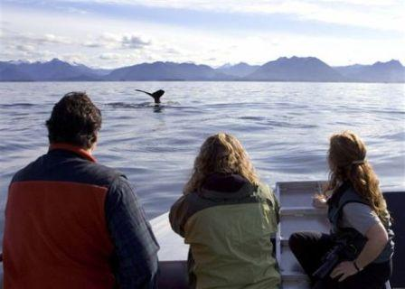 Naturalist & Interpretive Guide jobs in Ketchikan are available for seasonal employment