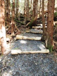 Day Alaska hiking in Ketchikan on the Rainbird Trail