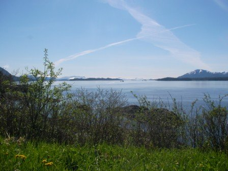 The view at Snorkel Alaska Cruise Excursions in Ketchikan Alaska