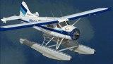 Taquan Air Ketchikan Tours