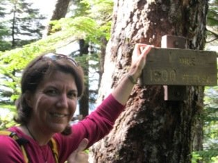 The plaque at the 1 mile overlook on Deer Mountain trail in Ketchikan Alaska