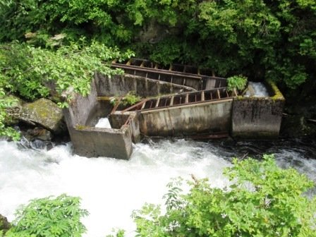 The Salmon Ladder in Ketchikan is a great place to watch jumping salmon